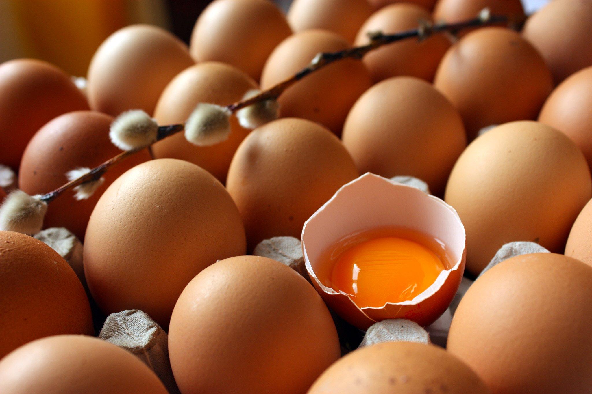 Zayıflamak İsteyenler Yumurtayı İhmal Etmesin