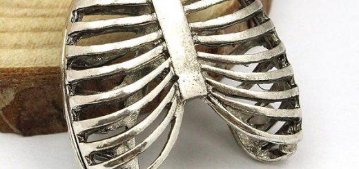 titanyum göğüs kafesi modeli